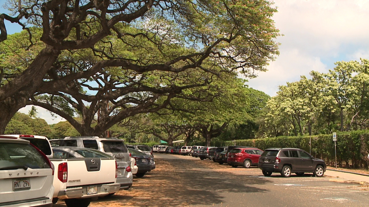 honolulu-zoo-parking-lot-2